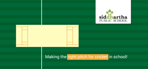 Reasons Children Cricket Play in School