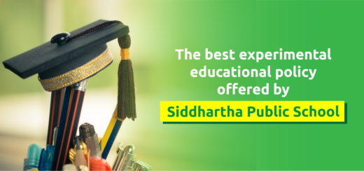 Best experimental educational policy